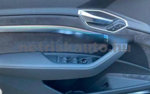 AUDI e-tron személygépkocsi - cm3 Kizárólag elektromos 109697 5/11